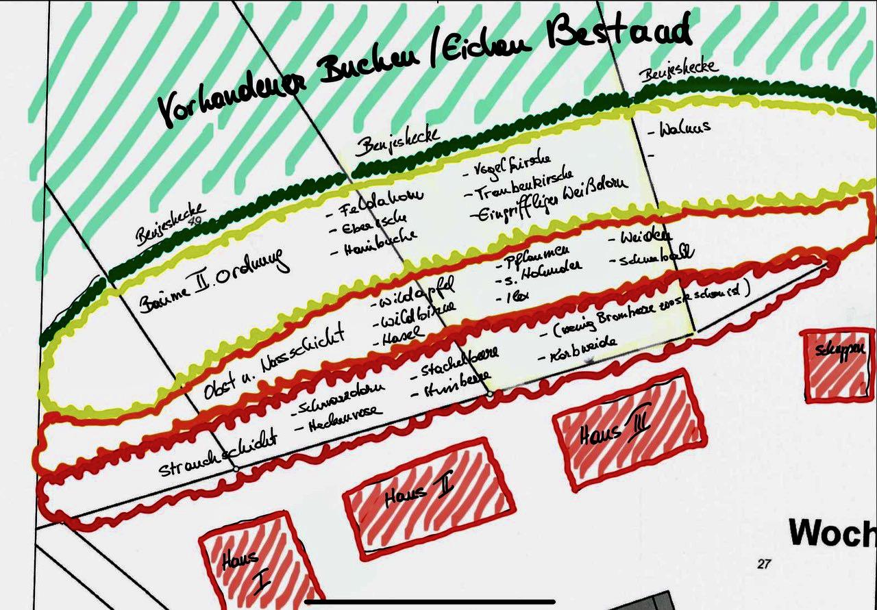 Bauphase 0221 Walden School 2